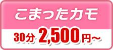 こまったカモ 30分2,500円~